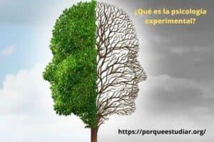 Psicología Primero ¿Qué es la psicología experimental?