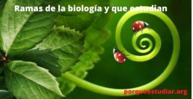 Que estudia la biología